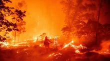 Zehntausende Menschen wegen Waldbränden in Kalifornien ohne Strom