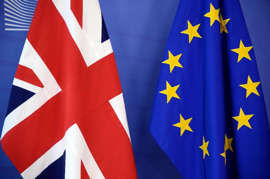 Britain voted by 52 percent in favour of leaving the European Union in a 2016 referendum (AFP Photo/THIERRY CHARLIER)
