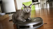 This Hot Trend Spells Big Growth for iRobot