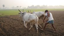 Why farm loan waivers are to be blamed?