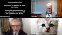 'I'm not a cat': Lawyer's hilarious Zoom hearing blunder