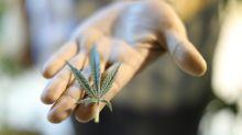 PHOTOS: Canada's marijuana regulations in every province, territory
