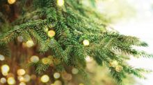 Christmas tree lights bought online could pose fire hazard