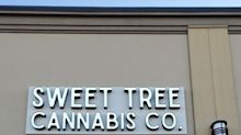 YSS Corp. Announces Grand Opening of Sweet Tree Okotoks and Final Inspections of Calgary Flagship Stores