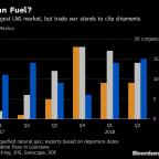 Huawei Arrest Keeps U.S.-China LNG Spat Alive, Developer Says