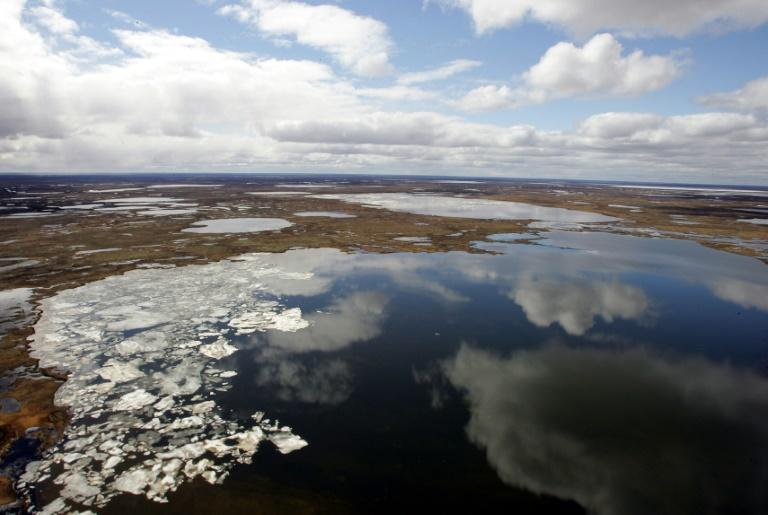 Siberia and the Arctic Circle are prone to large year-on-year temperature fluctuations, but the persistence of this year's warm spell is very unusual (AFP Photo/MAXIM MARMUR)