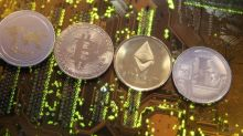 The Indian government is worried that cryptocurrencies may destabilise the rupee