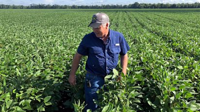GOP steps back demands, farm bill approved