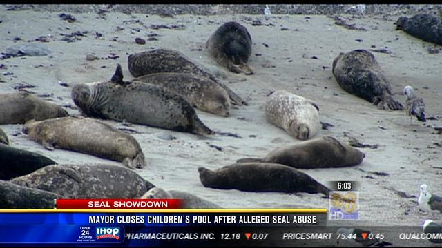 Mayor closes Children's Pool after alleged seal abuse