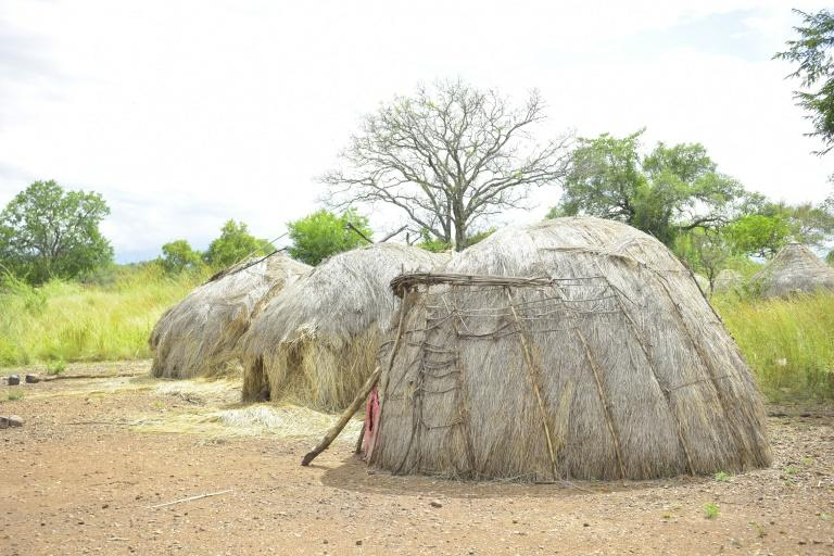 A traditional hut in the Mago National Park, home to the Mursi and the Bodi communities (AFP Photo/MICHAEL TEWELDE)