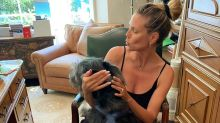 Meet Anton! Heidi Klum Welcomes New Puppy into Her Family on National Dog Day