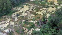 Un 20% de exportaciones brasileñas a la UE viene de la deforestación ilegal, según estudio