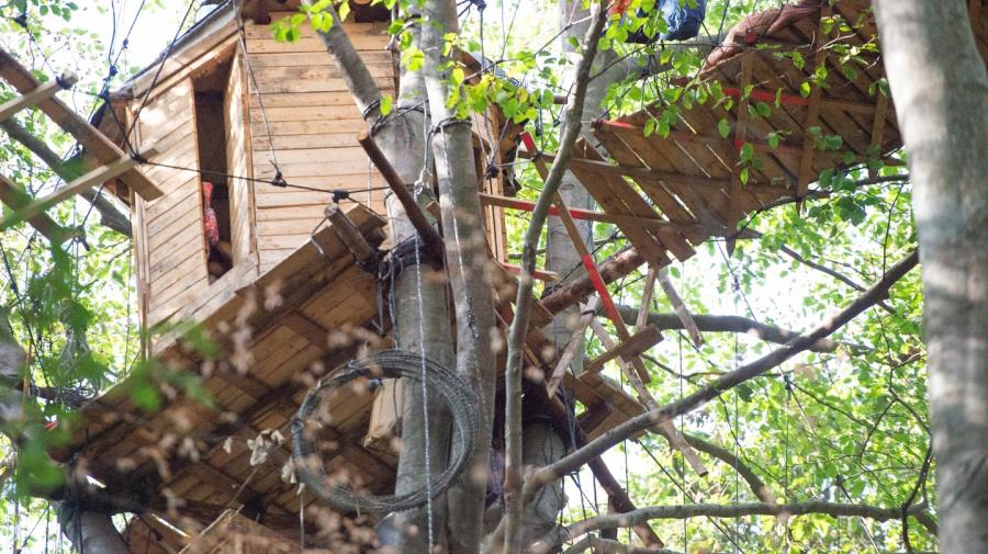 Polizei sichert Gefahrenstellen im Hambacher Forst