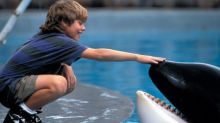 What Happened To The Boy From Free Willy?