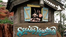 Disney fans call for Splash Mountain attraction to be re-themed due to racism