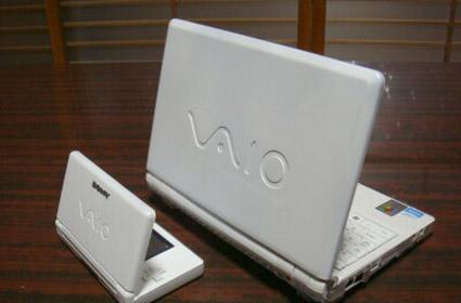 Nintendo Vaio Lite, for people who want to match