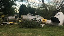 Pilot 'should be dead' after 69-year old fighter plane crash-landed and slammed into a tree at 130mph