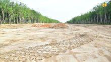 Pembangunan Ruas Tol Kramasan-Musi Landas-Betung 69 Km Resmi Dimulai
