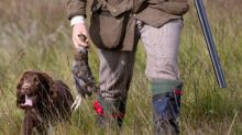 Call for grouse shooting to be licensed amid rise in bird of prey deaths