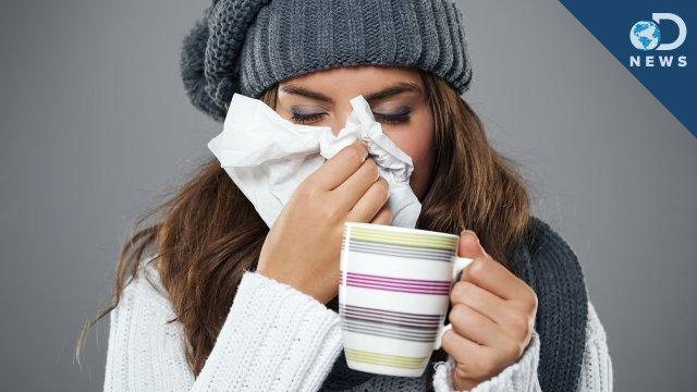 Do We Actually Get Sick More in Winter? - Discovery News