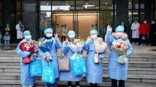 Coronavirus: do herbal remedies work, and could they help in the stricken epicentre of Hubei?
