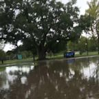 Hard Rain from Imelda leave Texas area soaked