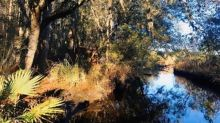Lowcountry unfiltered: A Civil War roadtrip through the backroads of Beaufort County