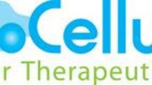ImmunoCellular Therapeutics Announces Results of Special Meeting of Stockholders Held June 26, 2020