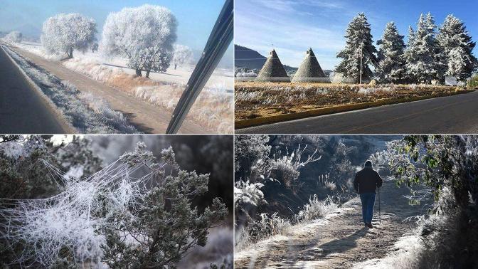 FOTOS | Tlaxcala se cubre de blanco por baja temperatura