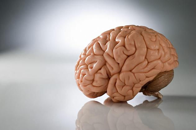 Stanford simulator predicts brain swelling to guide surgeons