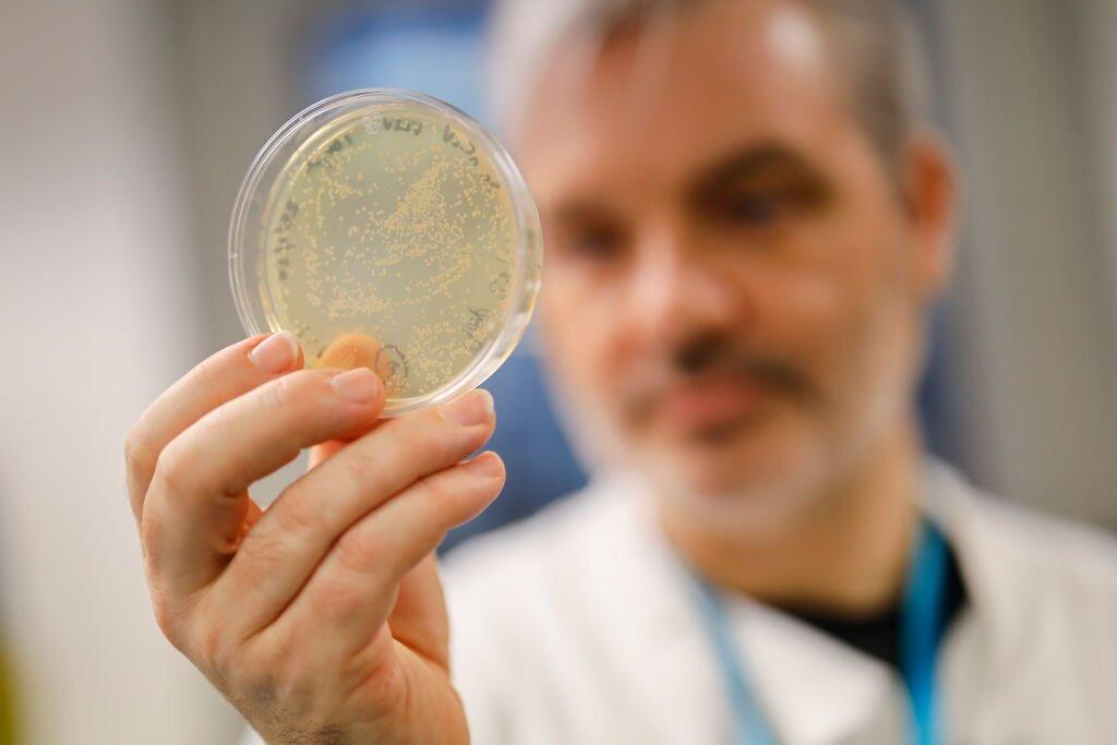 Coronavirus cases stabilise, but outbreak could go any way