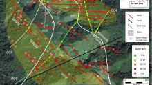 FenixOro Discovers New Zone With Multiple High Grade Veins, Intercepts 124.5 g/t Gold