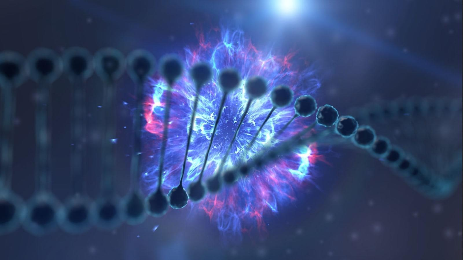 Hard drives of the future could be made of DNA   Engadget