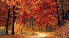 Equinozio 2019, quando è il primo giorno d'autunno