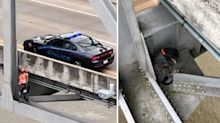 Heart-stopping rescue mission after dog becomes stuck under bridge