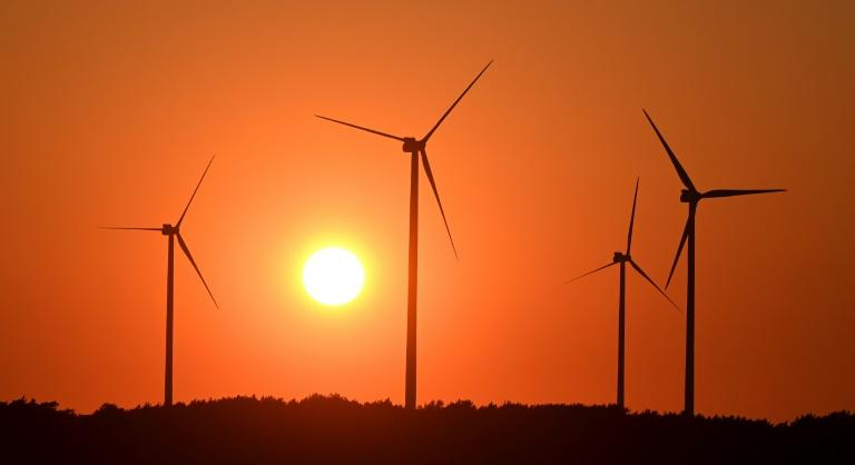 Wind and solar power at record high in 2020, coal dips: analysis