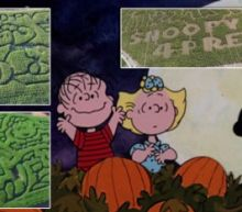 Farms Celebrate 50th Anniversary of 'Peanuts' Special With Charlie Brown-Themed Corn Mazes