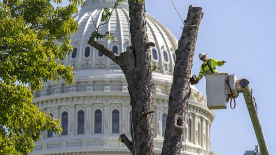 Debt ceiling, consumer confidence: What to know this week