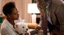 Conoce a Olivia, la perrita más ocupada de Hollywood