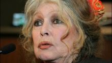 Französische Film-Ikone Brigitte Bardot schämt sich für ihr Heimatland