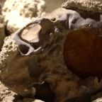 Remains of nine Neanderthals discovered near Rome