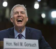 Neil Gorsuch stumped by viral 'horse-sized duck' question during confirmation hearing