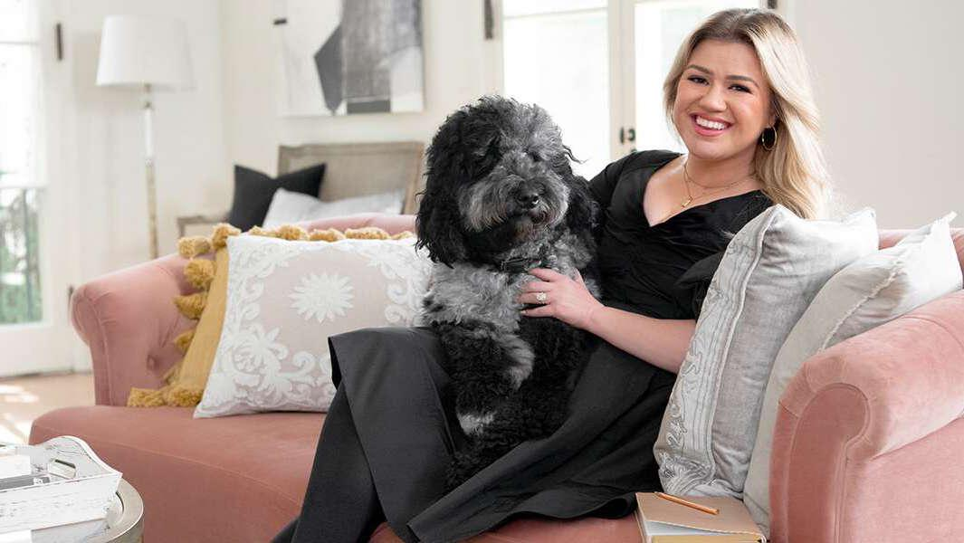 Kelly Clarkson Can Basically Sell Me Anything, Including This Couch