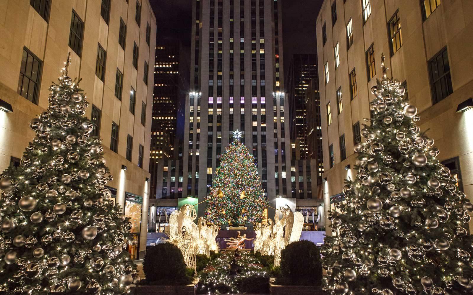Steve Harvey Christmas Tree.The 2019 Rockefeller Center Christmas Tree Is From Orange County New York
