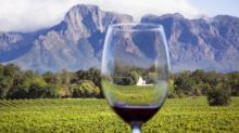 12 best South African wines