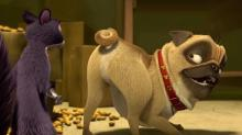 'The Nut Job' Clip: Can We Be Friends?