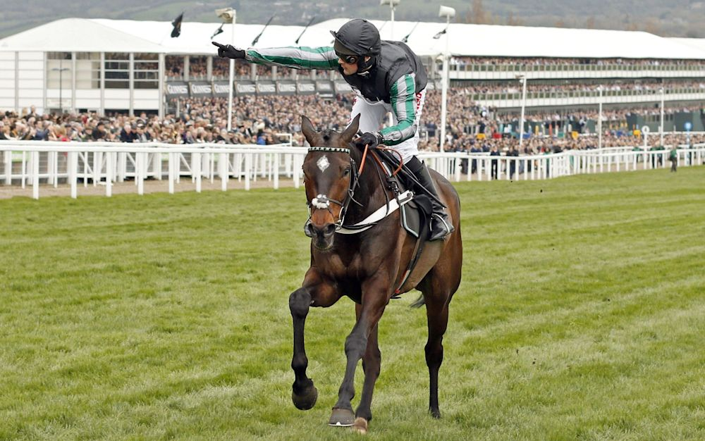 Altior is an odds-on shot in the Bet365 Celebration Chase - Rex Features