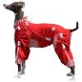 Do You Want Dog Apparel for Cheap?