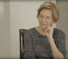 Elizabeth Warren's DNA test shows Native American ancestry
