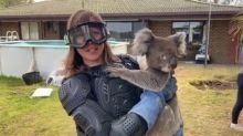 ITV News reporter tricked into wearing body armour to film with koala